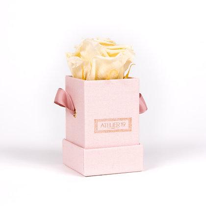 1 Rose Eternelle Champagne - Box carrée Rose Poudré
