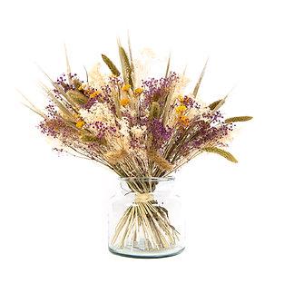 Bouquet de Fleurs séchées - Setaria XL - Parme Doux
