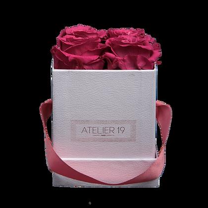 4 Roses Eternelles Fuchsia Peps - Box carrée Blanche