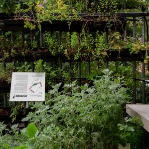Liebling garden