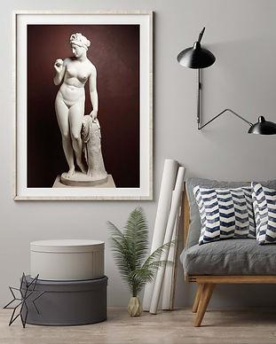 grey couch venus.jpg