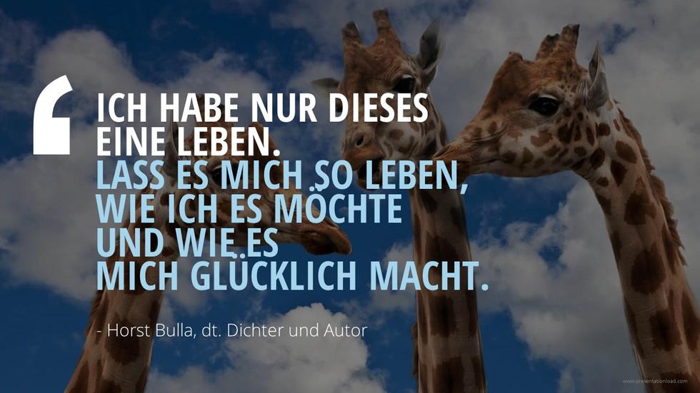 Ich habe nur dieses  eine Leben - Horst Bulla