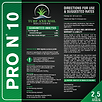 ProN10-01.png