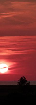 Couché de soleil sur l'estuaire