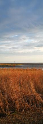 Réserve naturelle de l'estuaire