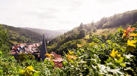 Hochzeit in Stolberg 11.jpg