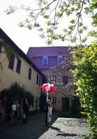 Heiraten in Halle   29.jpg