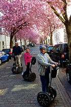 Kirschblüte in der Heerstraße