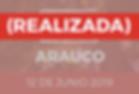 NCI_botones2019_ARAUCO_realizado-07.png
