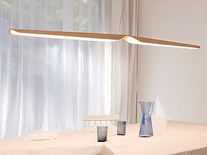 Swan Pendant Lamp - Tunto.com