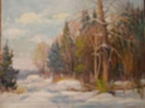 Tree LIning Snowy.jpg