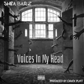 """Shea Barz- Invites Fans Into Her Life With """"Voices in My Head"""""""