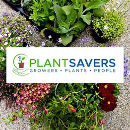 In image of the Plant Savers logo