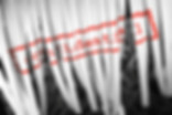 Distrugere Confidentiala | ArchivIT