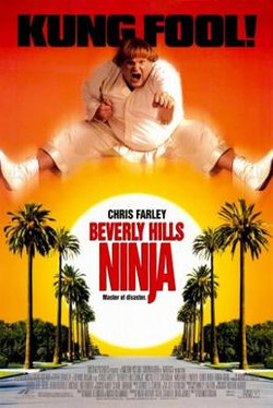 Beverly_Hills_Ninja