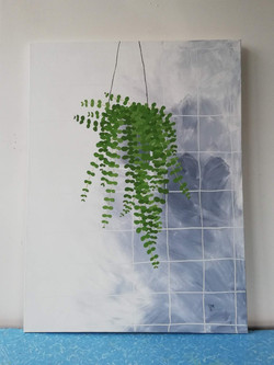 'Hanging Plant in a Bathroom'