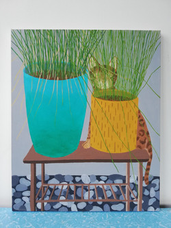 'Beryl Behind Two Plant Pots'