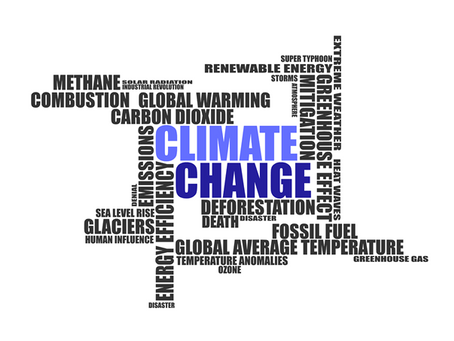 Cambio climático, ¿Quién lo resuelve?