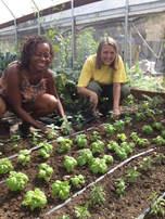 Women Grow Food Deep Dirt Farm