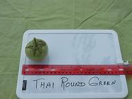 Thai Round Green.JPG