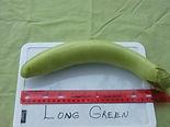Long Green.JPG
