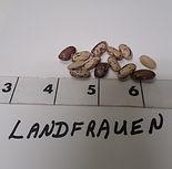 Landfrauen_edited.jpg