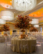 Blooming Gallery-The Zaza Hotel-18.JPG