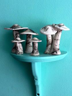 Anna D'Aste Horse Hair Mushrooms