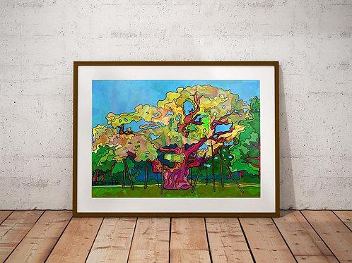 Major Oak Tree Sherwood Forest Art Print