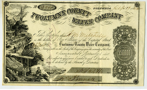CALIFORNIA GOLD RUSH — ATTRACTIVE TUOLUMNE COUNTY WATER COMPANY STOCK
