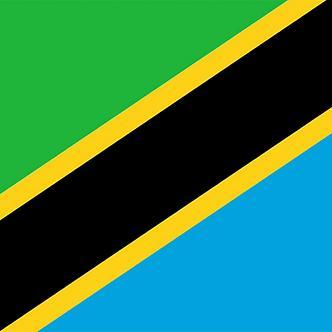 Travel Consultation - Tanzania