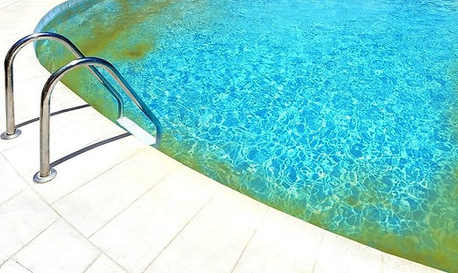 yellow-algae-in-pool.jpg
