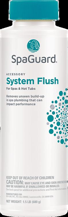 Spa System Flush