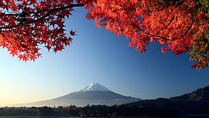 fuji-landscape-japan-maple.jpg