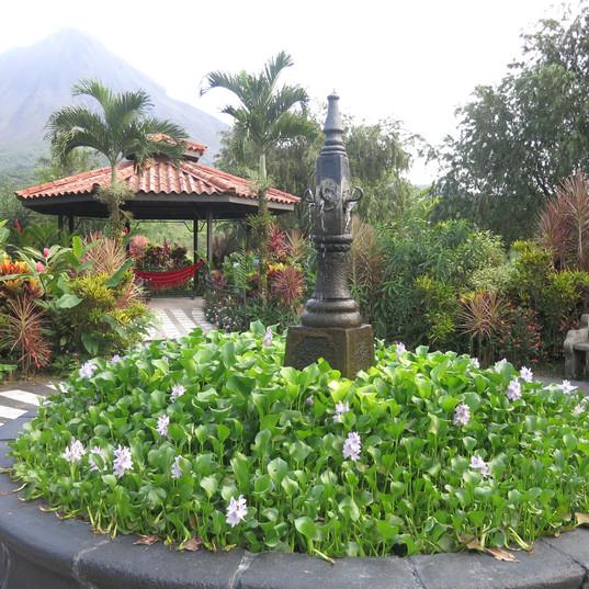 DMC Central America