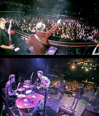 DINAMO_Live_web.png