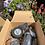 Thumbnail: Sea Fern Eco Gift Box