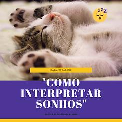 _Como interpretar sonhos_ (2).png