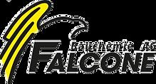 Logo Falcone.png