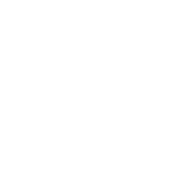 STUDIO VIE LOGO (WHITE).png