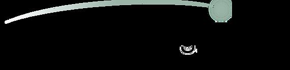 PenLight logo