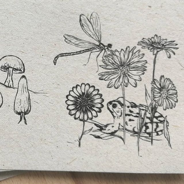 Details of the woodland writing set