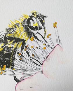Watercolour honey bee