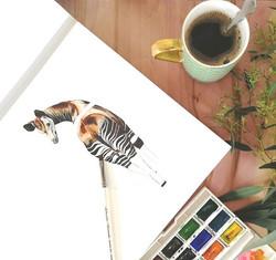 Okapi in progress