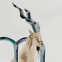 M is for Markhor