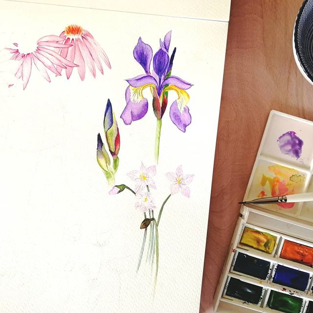 Wildflowers in progress