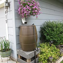 The Benefits of Rain Barrels and Why You Need One