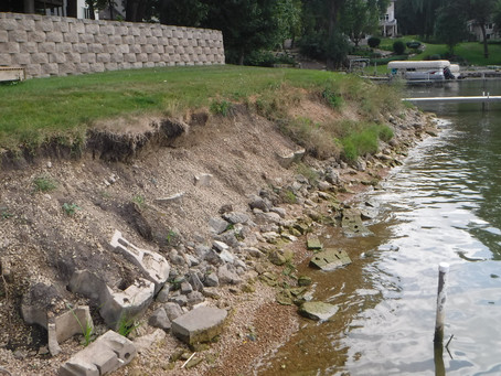 Prior Lake Homeowner Stabilizes His Shoreline with Native Plants