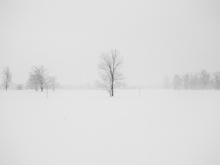 Coping with Seasonal Affective Disorder | 6 Strategies