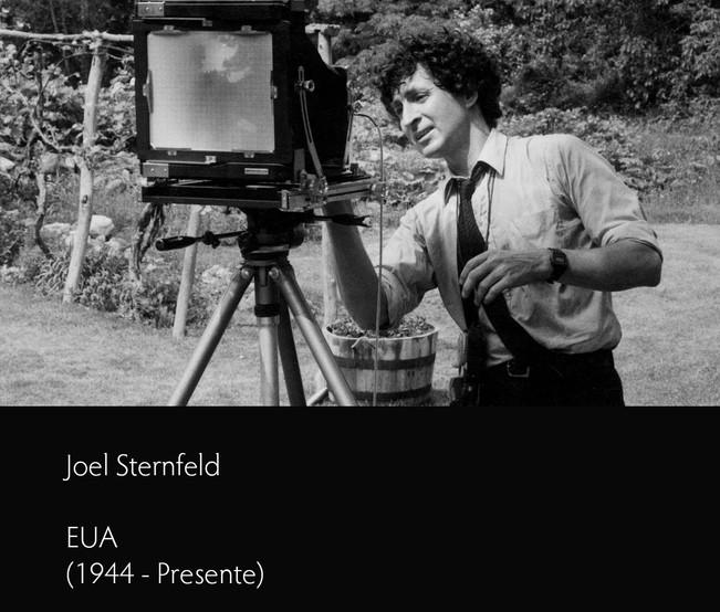 Joel Sternfeld - Localizar o Espectador